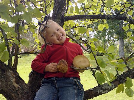 Hero opasti sienimetsällä ja ikuisti tyytyväisen sienestäjän.